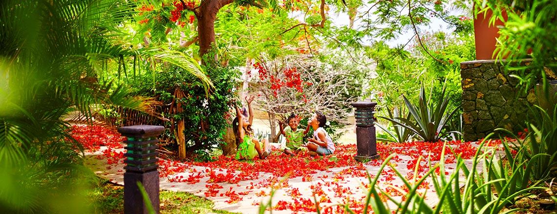 Flamboyant dans les jardins de l'hôtel, ILOHA Seaview Hotel 3*, île de la Réunion